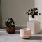 Nappula Plant Pot with Saucer Brown 17cmx13cm